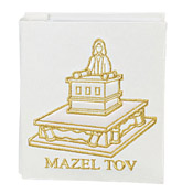 Bat Mitzvah Picture Album